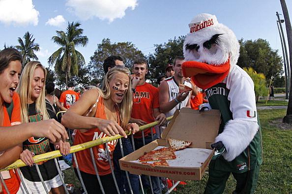 The Miami Hurricanes mascot 'Sebastian the Ibis'