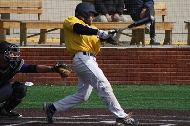 Marcus O'Neill, Augustana Vikings baseball